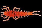 "LureMax STONE FLY 2,5""/6,5 см,008-Fire Carrot (8 шт)"