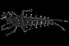 """LureMax STONE FLY 1,5""""/4,5 см,006-Black (10 шт)"""